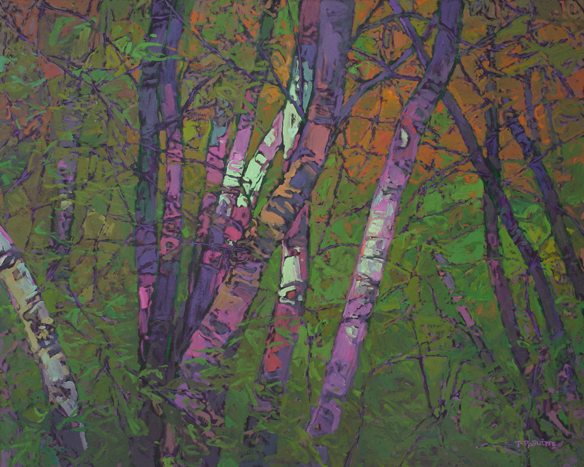 contemporary landscape oil painting of birch trees