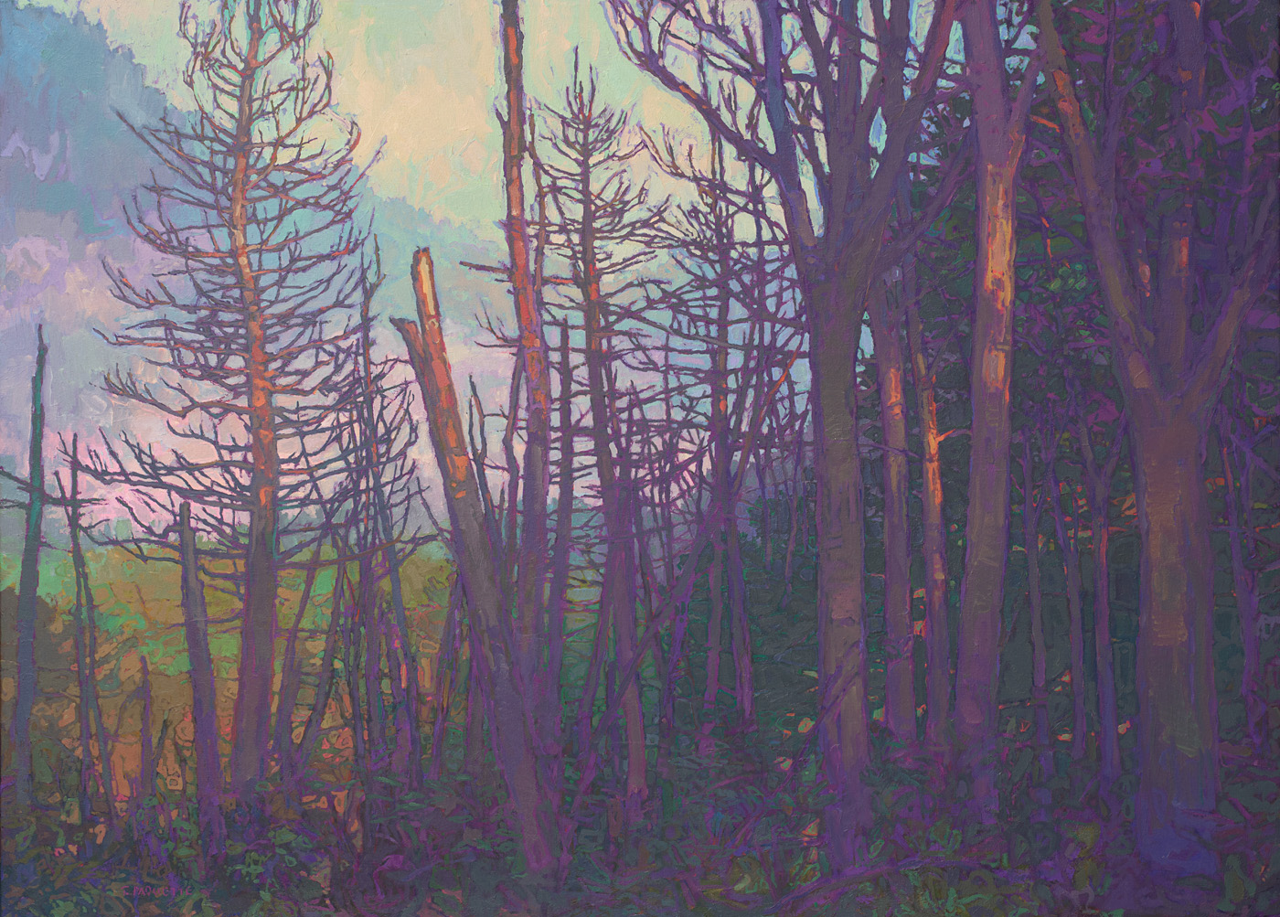 contemporary landscape oil painting of burned-over and recovering forest