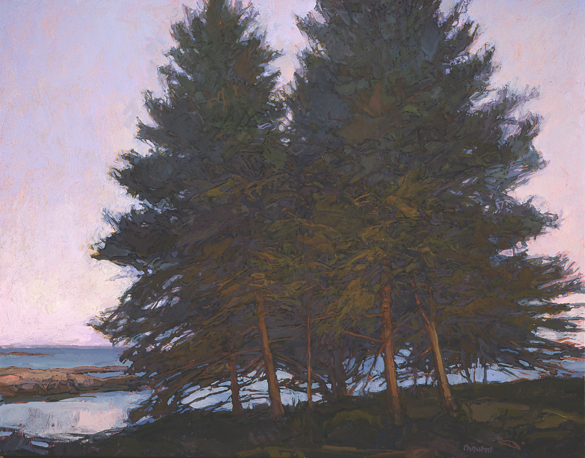 contemporary landscape oil painting of Maine shoreline spruces