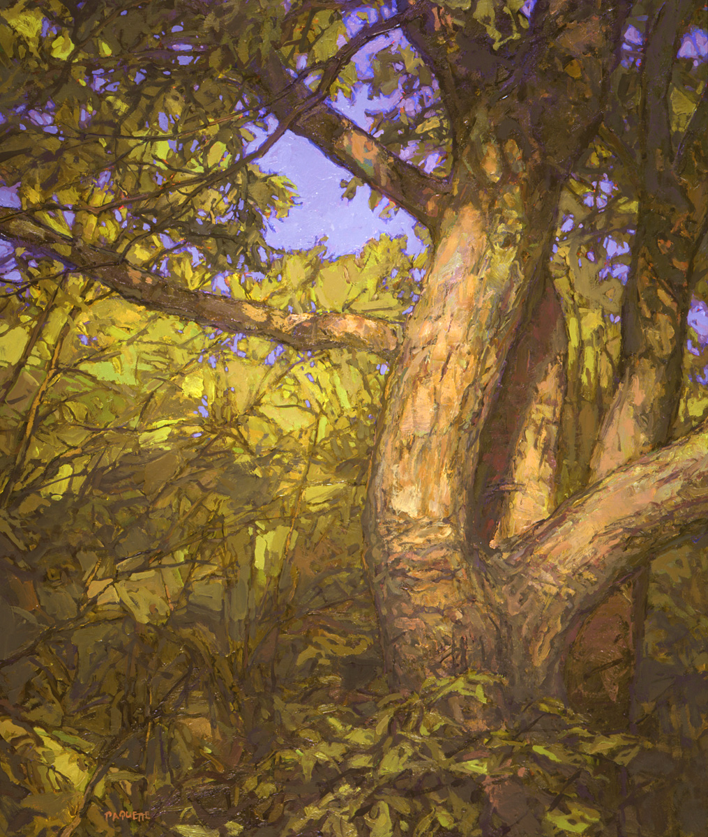 contemporary landscape portrait oil painting of twisted old tree