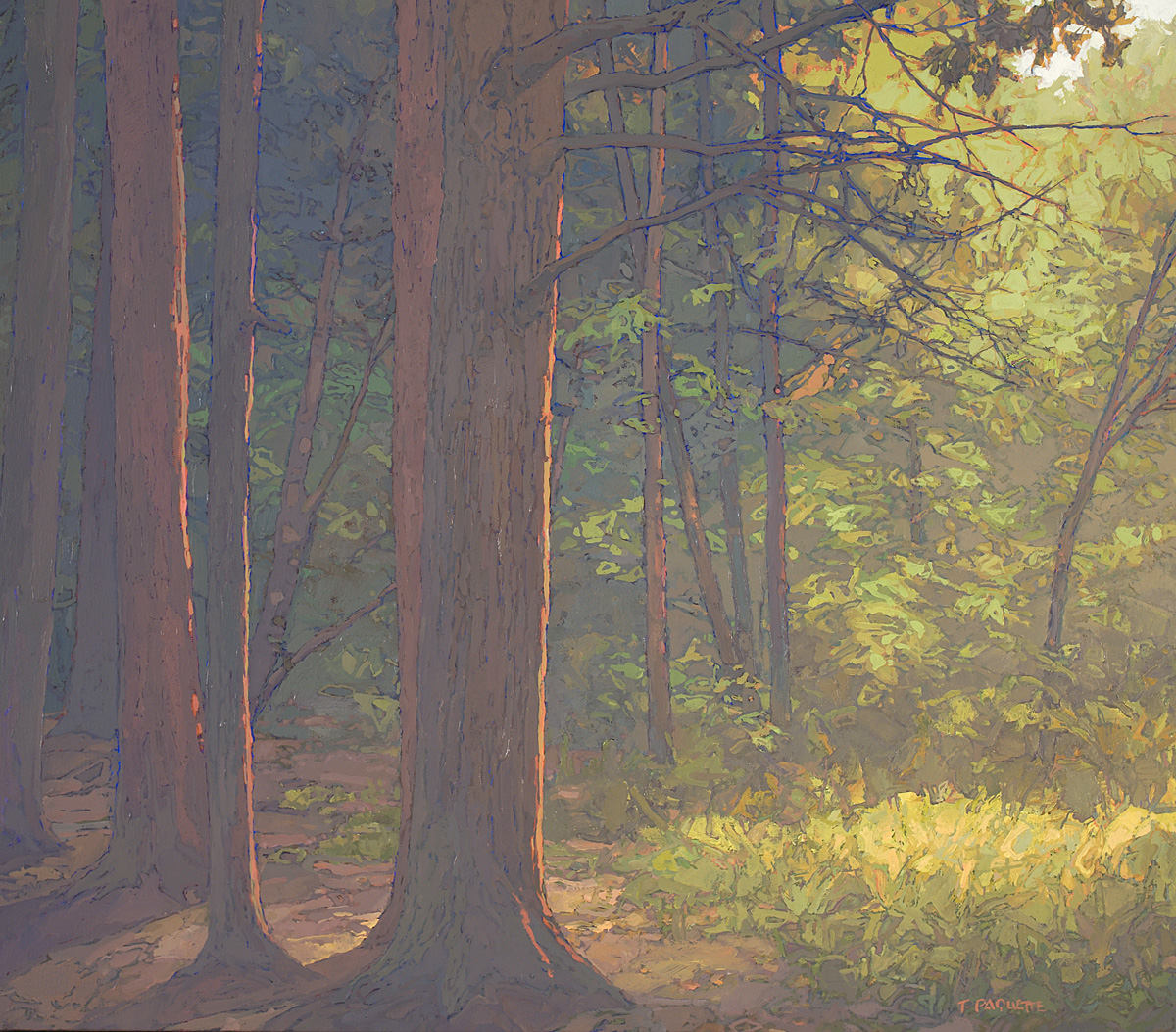 contemporary landscape oil painting of old growth trees in New York