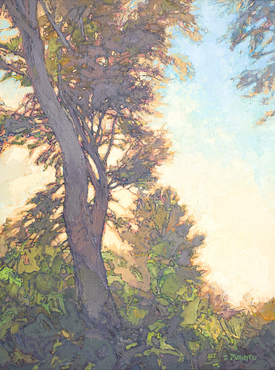 contemporary oil painting tree portrait