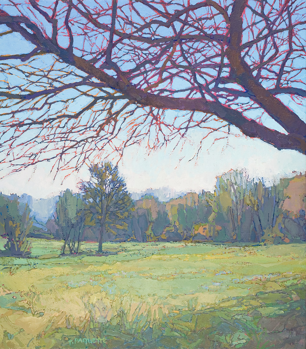 contemporary landscape oil painting of trees and field in the Luberon