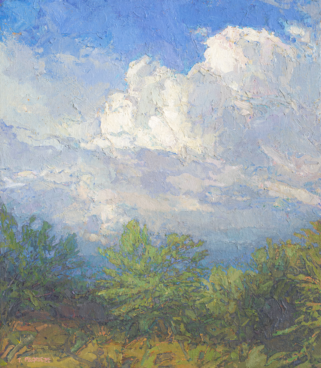 contemporary landscape oil painting of windy day in woods by Thomas Paquette