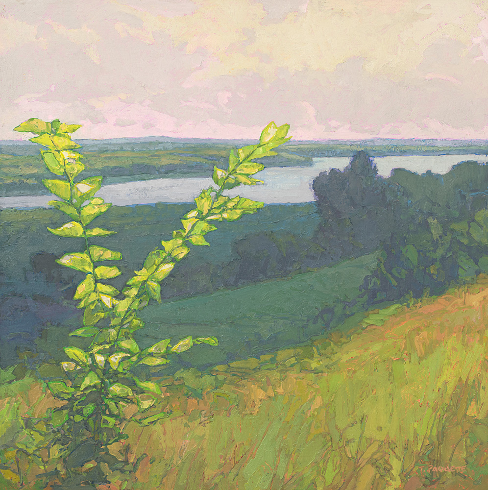 contemporary landscape oil painting overlooking river by Thomas Paquette