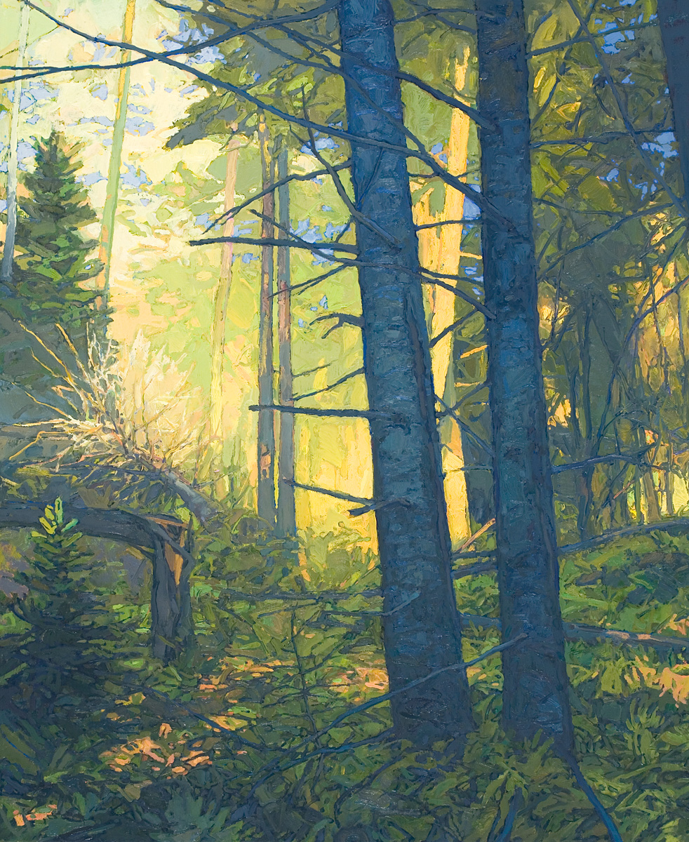 contemporary landscape oil painting of dense forest growth, Adirondack Park
