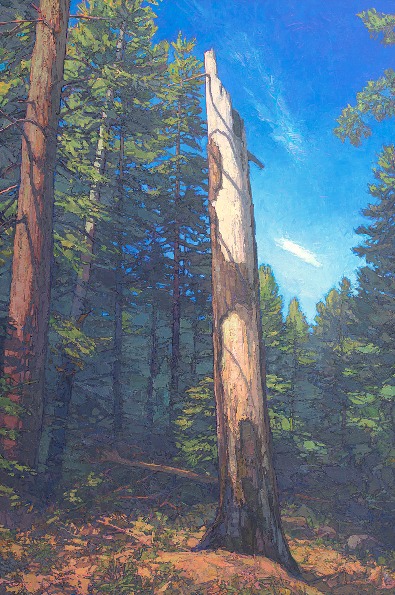 contemporary landscape oil painting of Desolation Wilderness Area old-growth snag