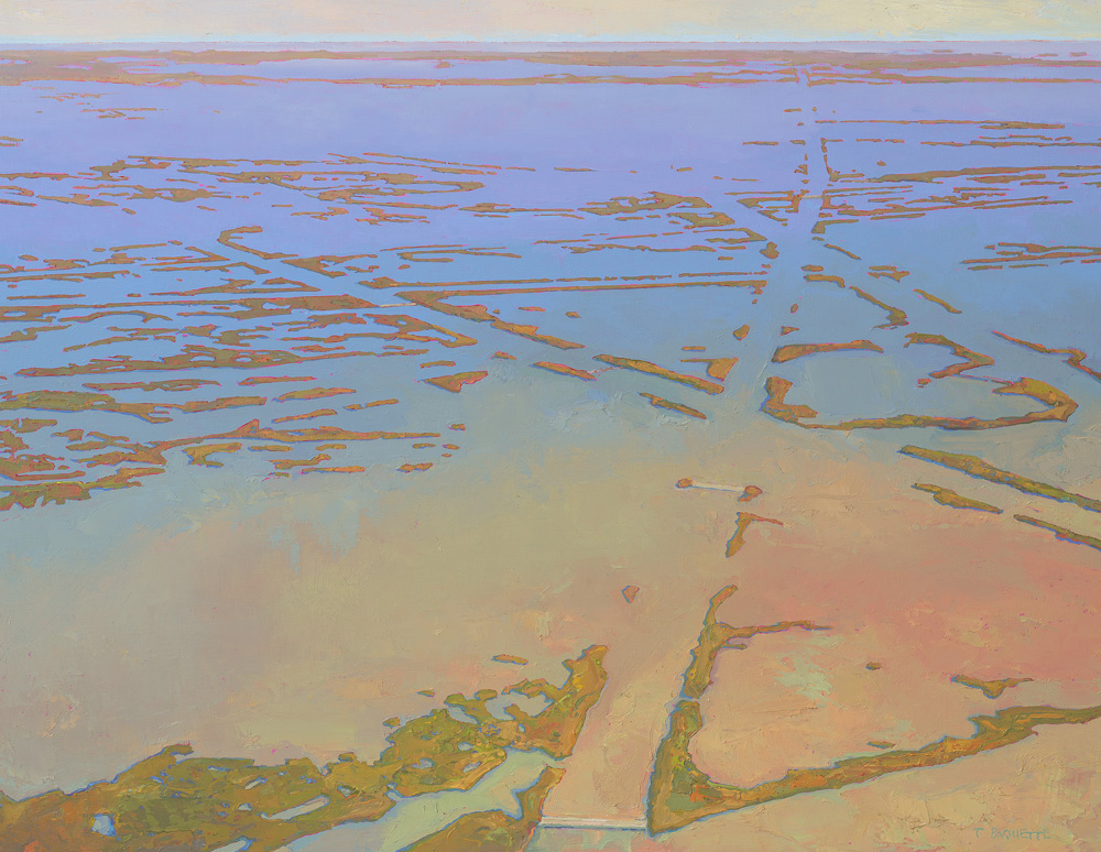 """""""Palimpsest"""" - Mississippi River delta oil painting by Thomas Paquette"""