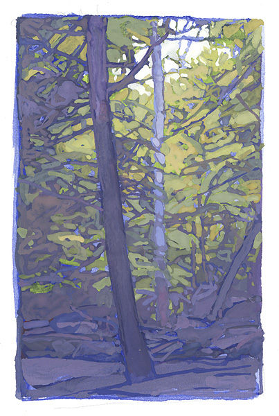 gouache painting of trees in shadow and light, Chautauqua Gorge, NY