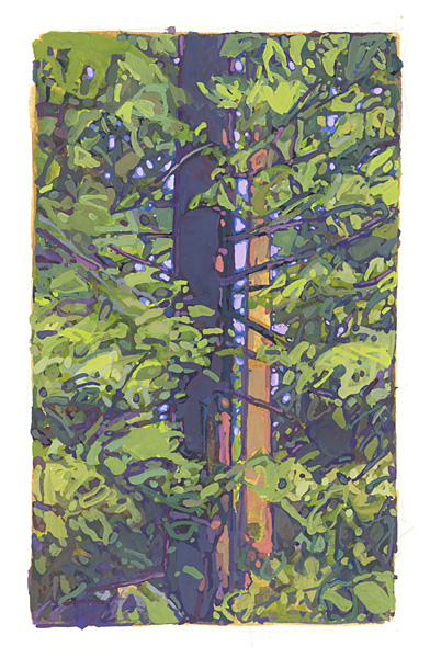 contemporary landscape gouache painting of dense forest, Sierra Nevada