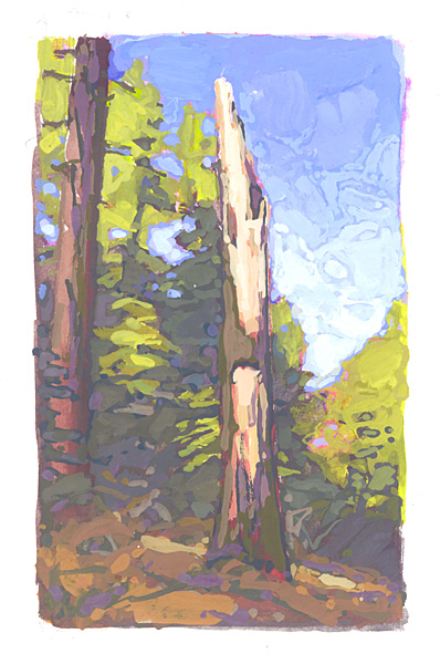 contemporary landscape gouache painting of old tree in Sierra Nevada wilderness, Lake Tahoe