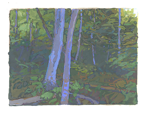 contemporary landscape gouache painting of trees in the White Mountains
